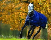Horseware Amigo Bravo 12 Turnout