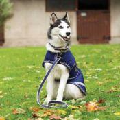 Horseware Amigo Hundedecke