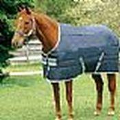 Horseware Insulator